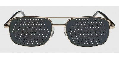 GD1 Trayner Glasses
